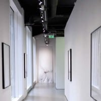 Art Gallery Lighting Specialist - Artist Exhibition of the Year